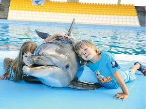 """Дельфинарий """"Оскар"""" в Кирилловке"""